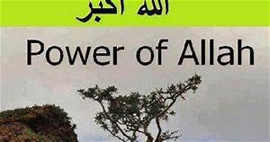 "Islam Miracles: SubhanAllah ""Power of Allah"""