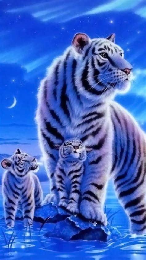Detroit Tiger Wallpaper For Android White Tiger W Babies Iphone Wallpaper Pinterest Babies Tigers And White Tigers