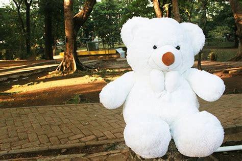 jual boneka beruang teddy bear besar putih lucu cm kado hadiah ulang  pacar diva store