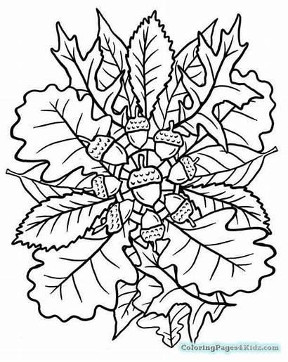 Coloring Mandala Autumn Fall Mandalas Automne Kleurplaten
