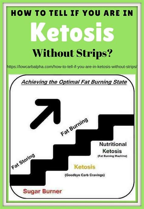 signs symptoms  long    ketosis
