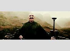 Mustache Voldemort 6