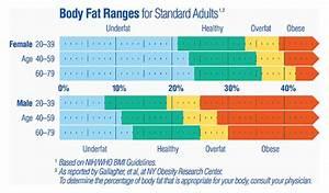 Amazon Com  Tanita Bf679w Duo Scale Plus Body Fat Monitor