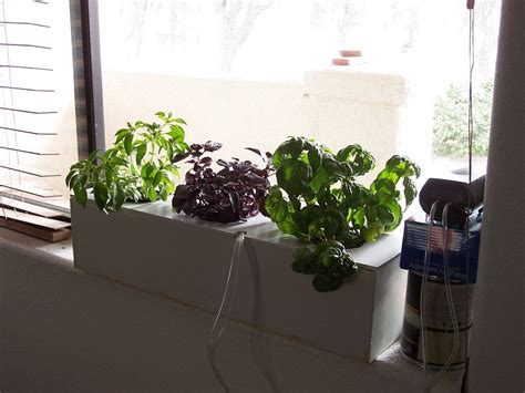 Window Sill Hydroponics by Build Your Own Hydroponic Window Herb Garden System