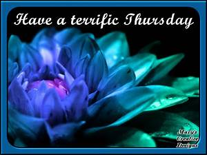 Have A Terrific Thursday Pictures, Photos, and Images for ...