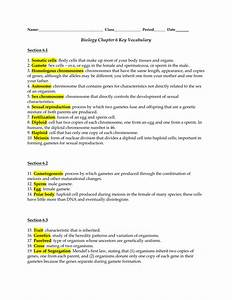 Biology Chapter 6 Key Vocabulary