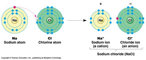 is table salt a compound cycle 1 explore 6 station