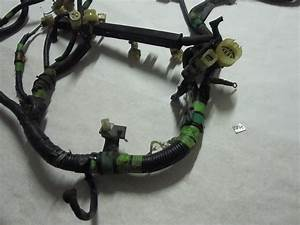 1990 Honda Civic Wiring Harness Tail : 1990 1991 honda crx 5 speed manual engine wiring harness ~ A.2002-acura-tl-radio.info Haus und Dekorationen