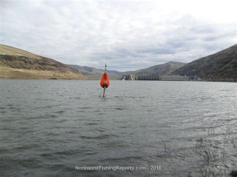 05 lower granite dam to interstate bridge fishing report