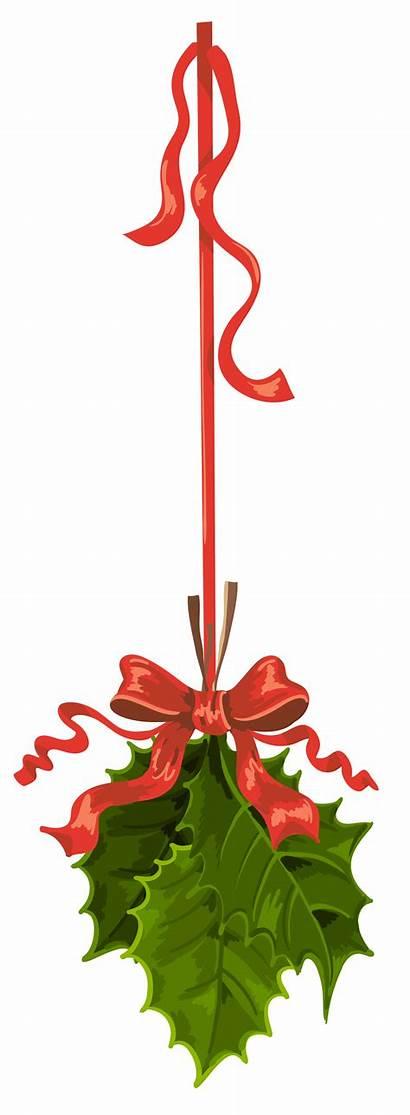 Clipart Mistletoe Transparent Hanging Clip Holly Animal