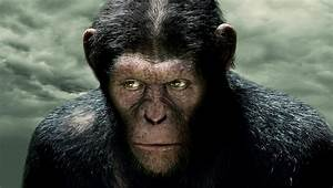 Rise Of The Planet Of The Apes Exclusive
