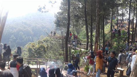 wisata alam rumah pohon pabangbon bogor melihat keindahan