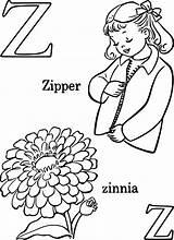 Kolorowanki Kwiaty Cynni Zinnia Dzieci Getdrawings sketch template