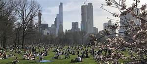 Central Park Auto : a piedi nudi nel parco central park vietato alle auto dal 27 giugno il sole 24 ore ~ Gottalentnigeria.com Avis de Voitures