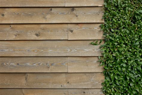 images structure grain texture floor ivy