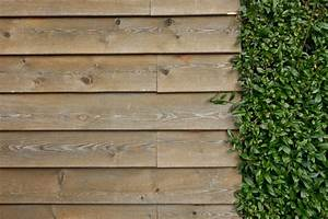 Free Images : structure, grain, texture, floor, ivy ...