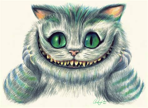 cheshire cat  painted rabbit  deviantart