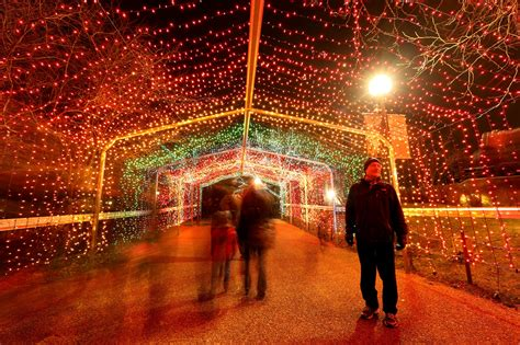 brookfield zoo and lincoln park zoo lights
