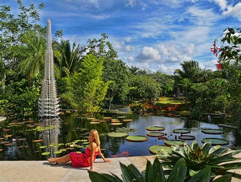 naples botanical gardens fantastic and cultural attractions in naples florida