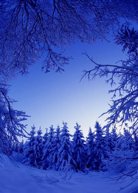 Beautiful Winter Scenes (15 Photos)  My Modern Met