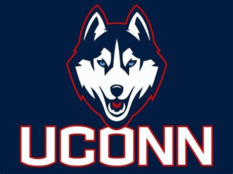 uconn colors uconn huskies rep your colors husky and