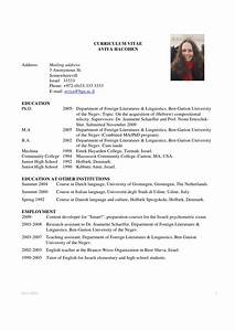 Latest Resume Format Example Academic CV Template