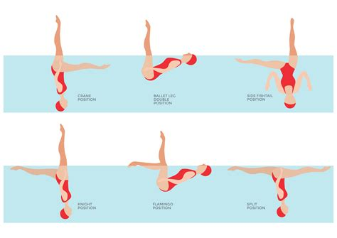 Basic Skills And Positions In Synchronised Swimming Activesg