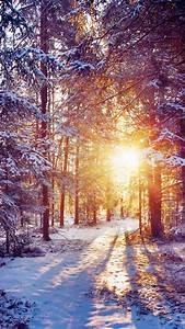 Winter, Themed, Backgrounds, U00b7, U2460, Wallpapertag