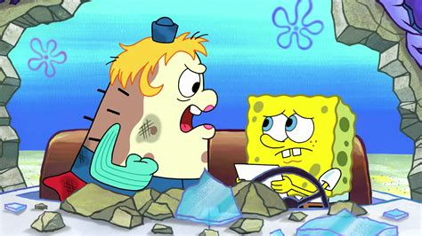Sponge Out Of Water Soaks Up The Fun