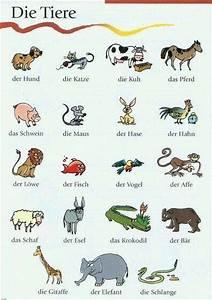 Fichas de vocabulario con imágenes (desde pinterest)