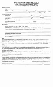 printable child custody form legal pleading template