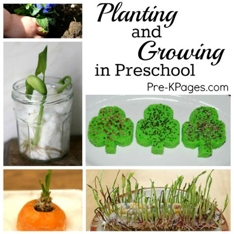 planting  gardening  preschoolers pre  pages