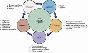 Nursing Process Diagram Images