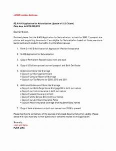 N 400 cover letter sample for N 400 application cover letter