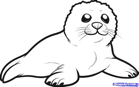 Leopard Seal Coloring Page Getcoloringpagescom