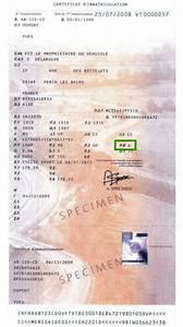 Carte Grise Import : tarif d 39 une carte grise duplicata espace carte ~ Medecine-chirurgie-esthetiques.com Avis de Voitures