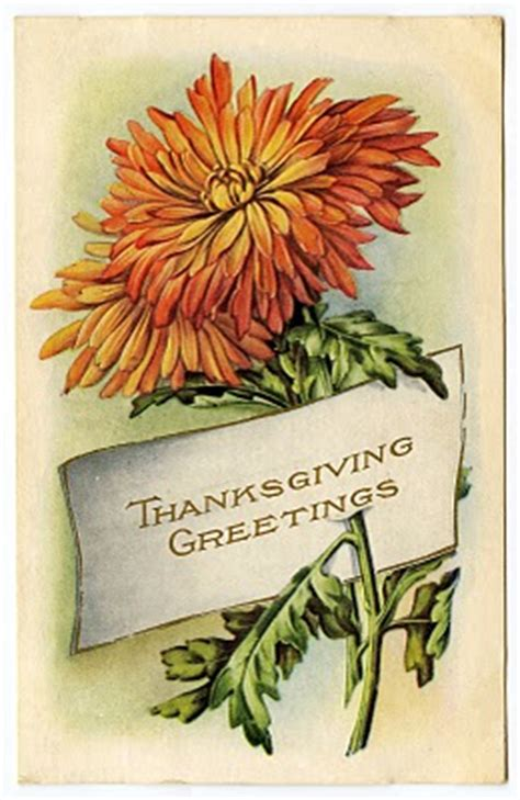 vintage thanksgiving clip art mums placecard