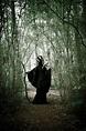 Malevolent Fairy Cloak Dress Maleficent Evil Queen Ritual ...