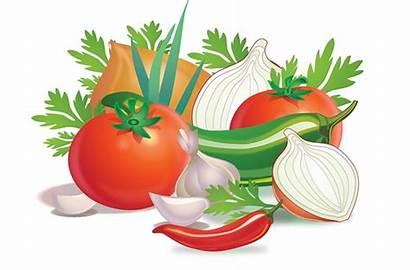 Salsa Veggies Vegetables Label Behance Assorted