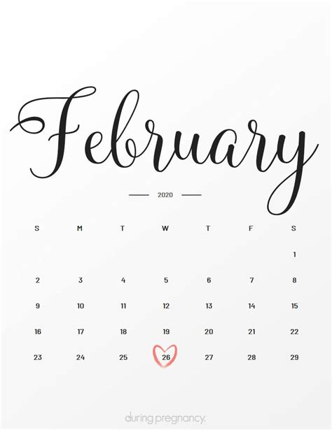 Due Date: February 26 2020 During Pregnancy