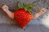 Genetically Modified Strawberries by KeswickPinhead on ...