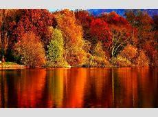 65 schöne Hintergrundbilder zum Herbst! Archzinenet