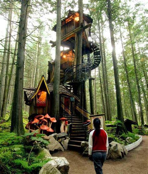 tree houses        kid