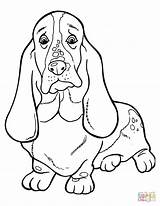 Coloring Pages Dachshund Hound Basset Printable Cute Drawing Silhouettes Paper Dot Kleurplaat Bassett Dogs sketch template