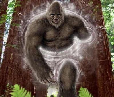 bigfoot evidence man   talks  sasquatches