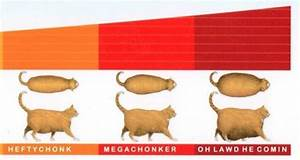 The Chonk Chart Chonk Oh Lawd He Comin 39 Know Your Meme