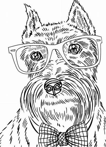 Coloring Pages Dog Adults Funny