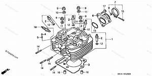 2007 Honda Trx 400 Engine Diagram