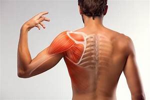 Rolfing - AIDIA INDIVIDUALIZED CARE Rolfing