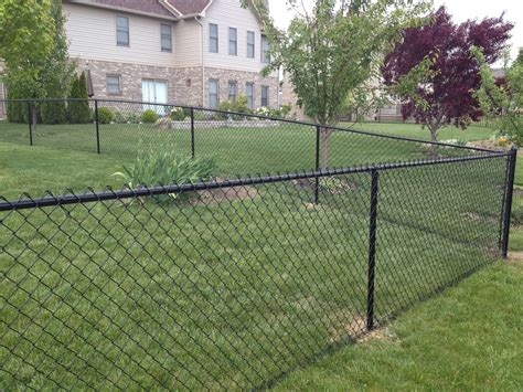 6 chain link fence 4 black vinyl chain link fence by by affordable